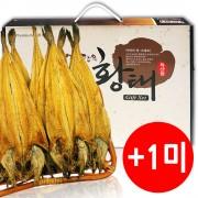 용대리 황태덕장 황태포 10미 40-48cm 선물포장가능