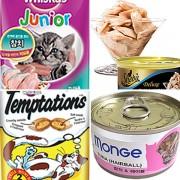 고양이간식 위스카스 캐츠랑 쉬바 템테이션 몬지